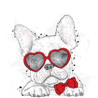 Pies w okularach i krawat na białym tle