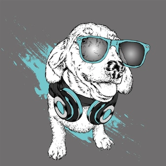 Pies w okularach i słuchawkach