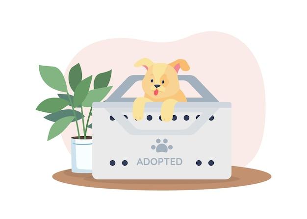 Pies w pudełku do adopcji ze schroniska baner 2d, plakat