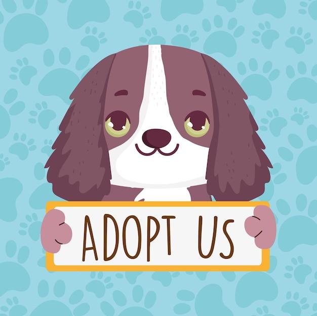 Pies z banerem adoptuj nas