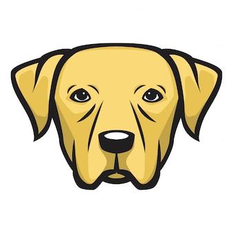 Pies z głową labradora