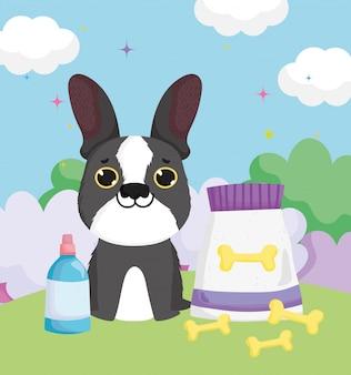 Pies z kośćmi pakuje jedzenie i butelkuje zwierzęta domowe