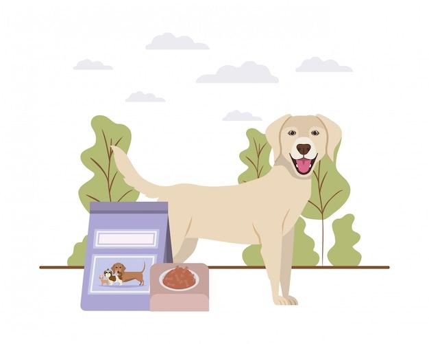 Pies z pucharu i zwierzęcia domowego jedzeniem na krajobrazie