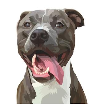 Pies Premium Wektorów