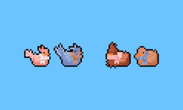 Piksel kreskówka ptak ubrany w szalik zestaw znaków. 8bit.