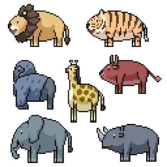Pikselowa sztuka zwierząt w zoo w safari