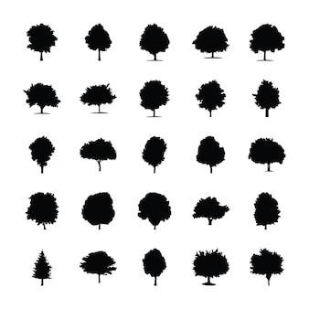 Piktogramy drzew zimozielonych