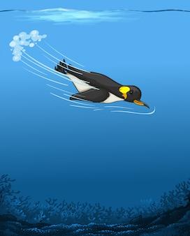 Pingwin pływający pod wodą
