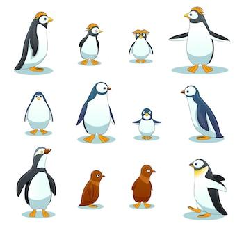 Pingwiny znaków w różnych pozach wektor zestaw. ilustracja zwierząt pingwina, pingwin rysunkowy, pingwin ptak zimowy