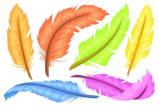 Pióra, różne kształty i kolory.