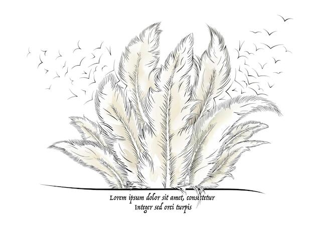 Pióra z tekstem. ilustracja wektorowa