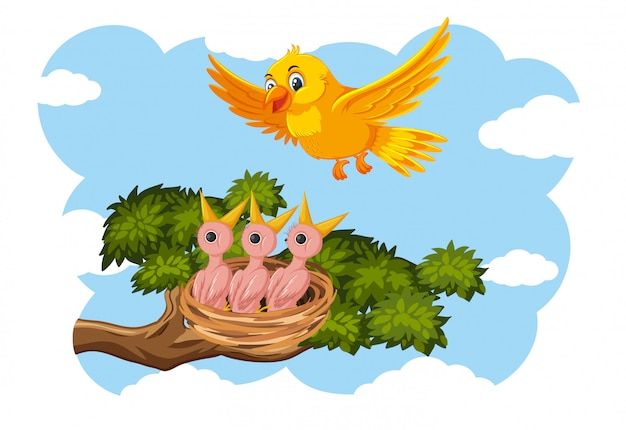 Pisklęta i ich ptaki w przyrodzie