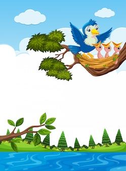 Pisklęta w gnieździe na gałęzi drzewa