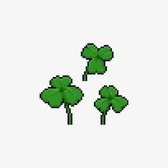 Pixel art cartoon zestaw ikon liść koniczyny.