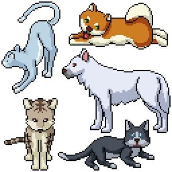 Pixel art zestaw izolowane zwierzę domowe