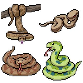 Pixel art zestaw izolowany wąż dżungli
