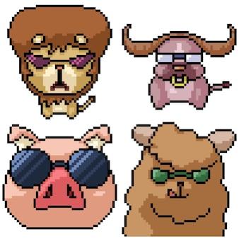 Pixel art zestaw na białym tle fajne okulary zwierzę