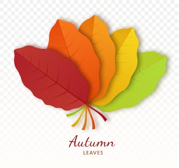 Plakat jesienny liść na przezroczystym tle