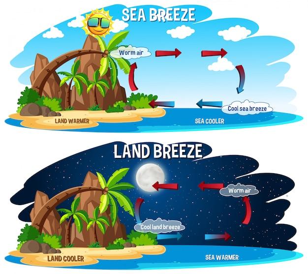 Plakat naukowy dla bryzy morskiej i lądowej