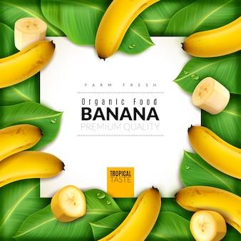 Plakat realistyczny owoc bananowy. w centrum baneru z bananami, plasterkami i liśćmi dookoła