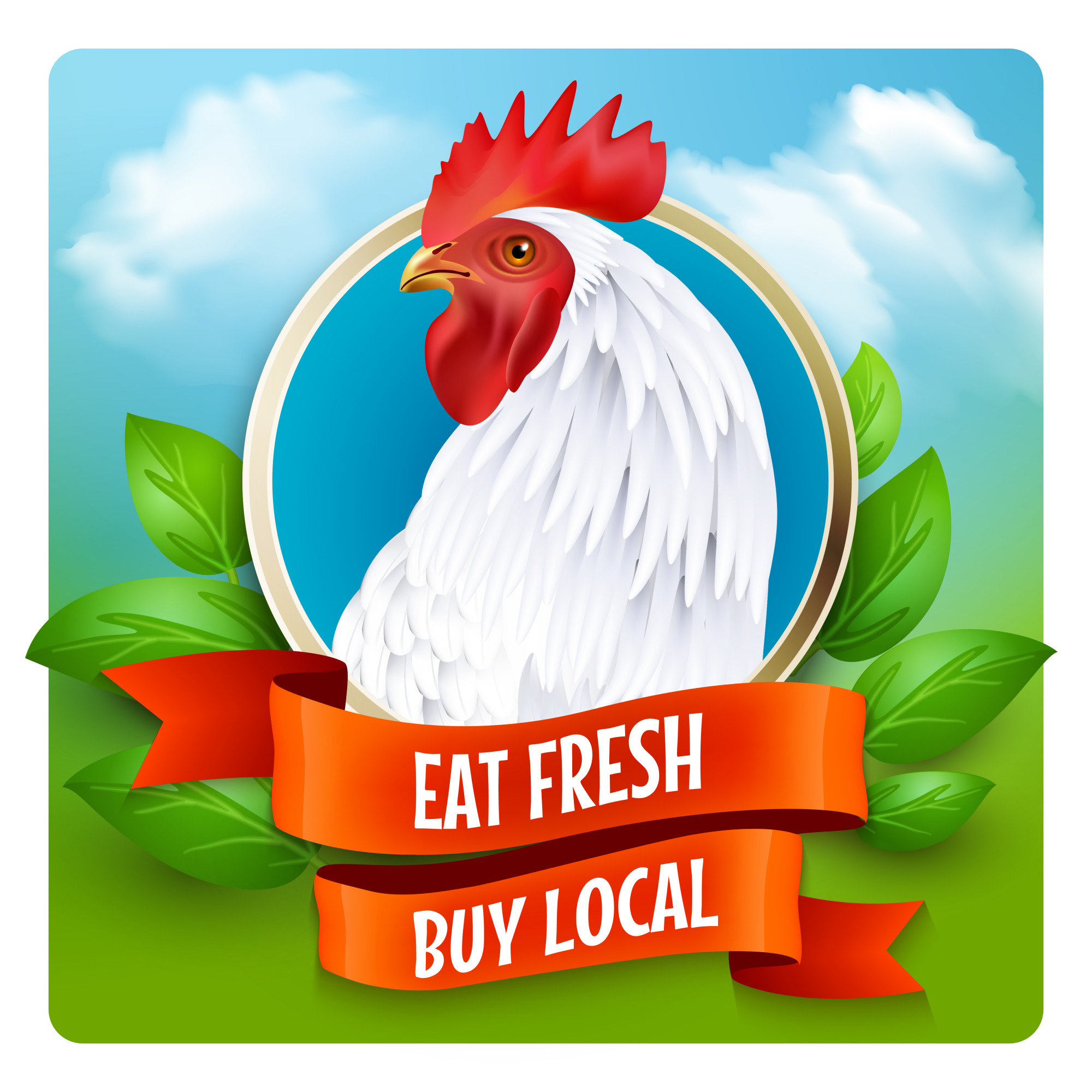 Plakat reklamowy White Rooster Head