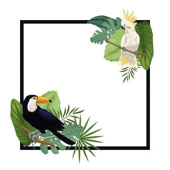 Plakat tropikalny egzotyczny ptak palmowy