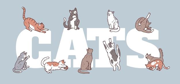 Plakat z kotami w różnych pozach. nie rasowe zwierzęta zarys doodle wektor ulotki lub baner.