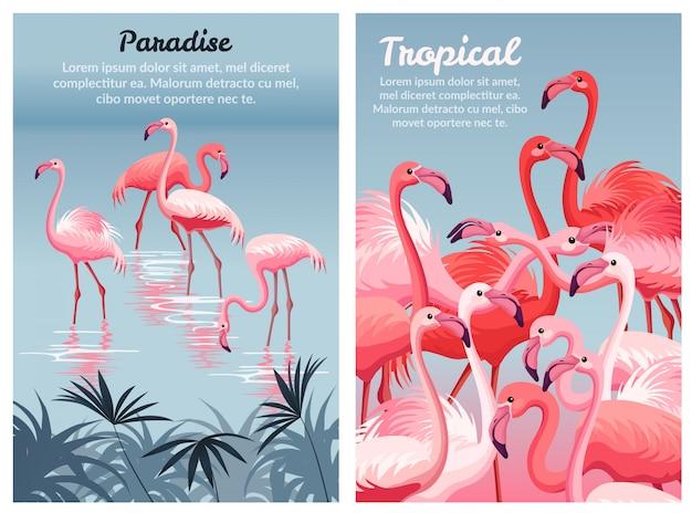 Plakatowy szablon flamingo.