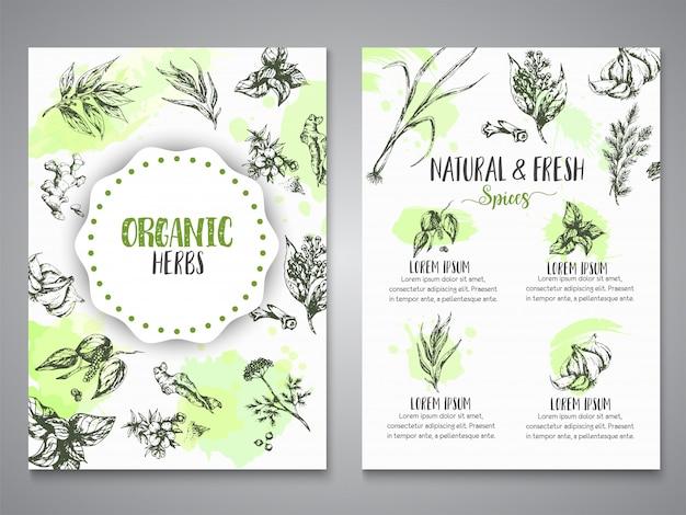 Plakaty z ziół i przypraw. zioła, rośliny, przyprawy ręcznie rysowane banery, elementy menu.