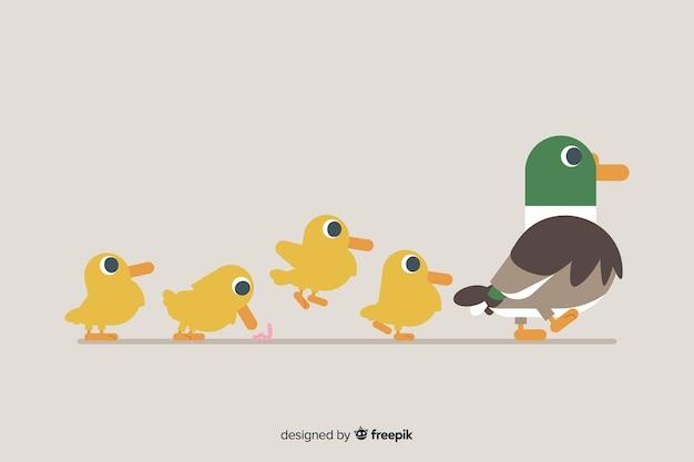 Płaska kaczka matka i kaczątka