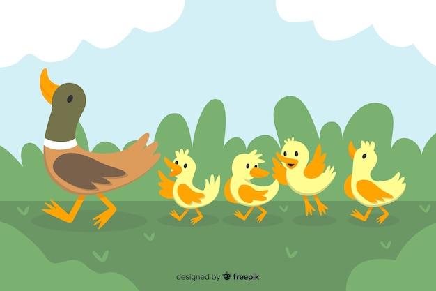 Płaska kaczka matka z kaczątkami
