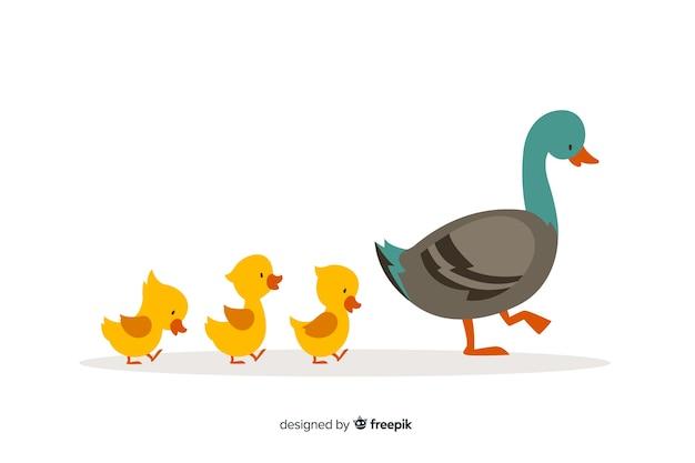 Płaska kaczka matki i słodkie żółte kaczątka