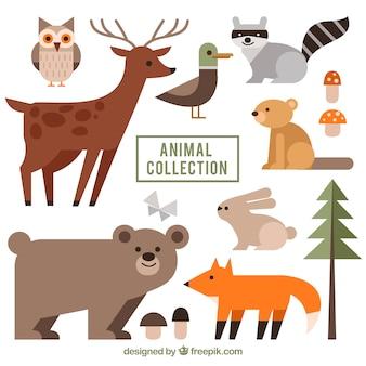 Płaska kolekcja dzikich zwierząt