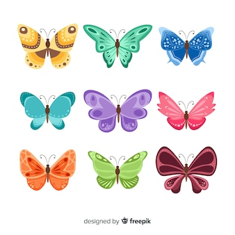 Płaska kolekcja motyli