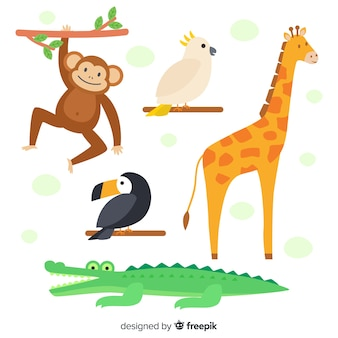 Płaska kolekcja zwierząt tropikalnych