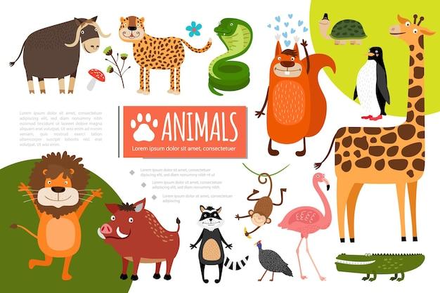 Płaska kompozycja zwierząt w zoo z bawolym lampartem wąż wiewiórka pingwin żółw żyrafa flamingo krokodyl paw szop małpa dzik lew ilustracja