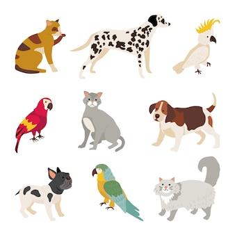 Płaska konstrukcja ilustracja różnych zwierząt domowych kolekcji