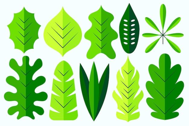 Płaska konstrukcja różnych zielonych liści