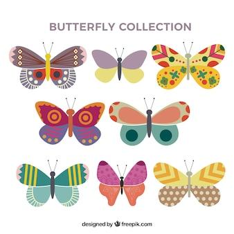 Płaski butterfly collection