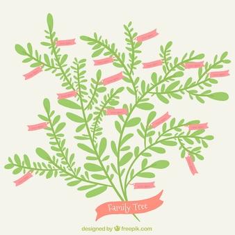 Płaski drzewo genealogiczne z różowymi etykietami