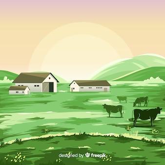 Płaski krajobraz gospodarstwa