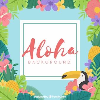 Płaski projekt aloha pelican tle