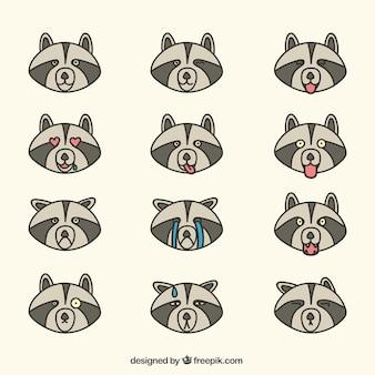 Płaski zestaw emotikonów raccoon