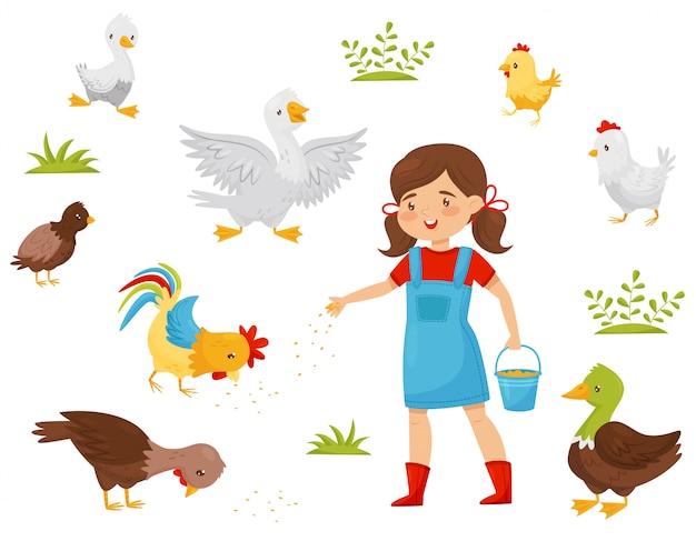 Płaski zestaw ptaków hodowlanych, mała dziewczynka z wiadrem ziarna. dziecko karmi ptactwo domowe. drobiarski