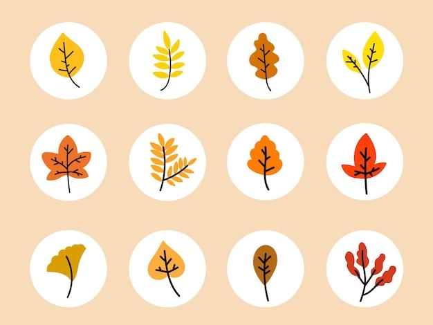 Płaskie elementy mediów społecznościowych z jesiennymi liśćmi