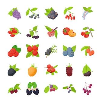 Płaskie ikony owoce jagodowe