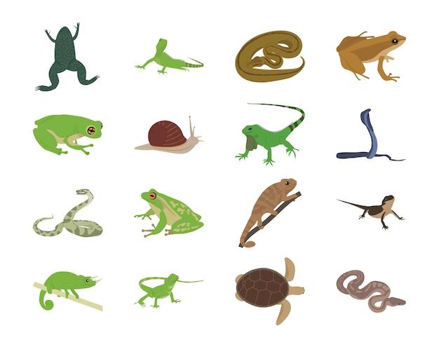 Płaskie ikony zwierząt