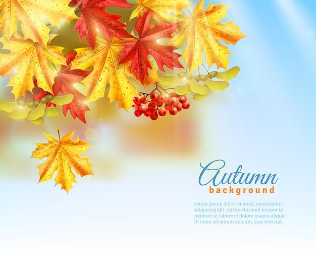 Płaskie jesieni tło