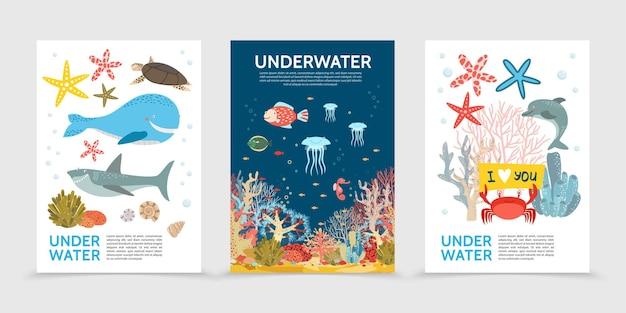 Płaskie kolorowe broszury o życiu podwodnym z rybami, żółwiami wielorybami, rekinami, meduzami, konikami morskimi, rozgwiazdami