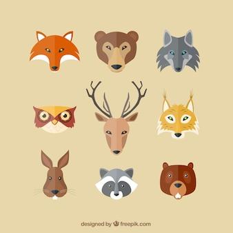 Płaskie poważne awatary zwierząt